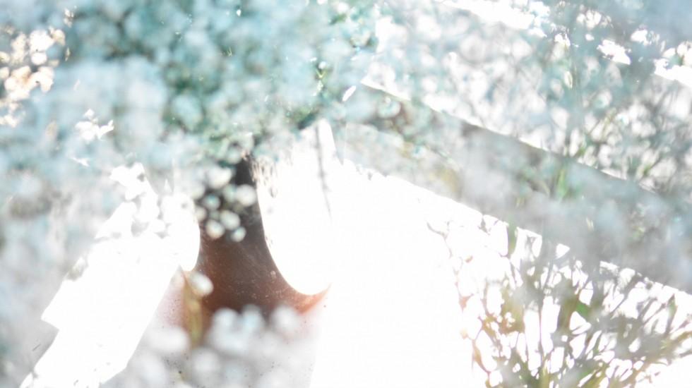 ココボタニカルのドライフラワーのイメージ写真「Blue flower」
